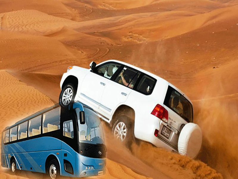 Standard Desert Safari (Bus Pickup)